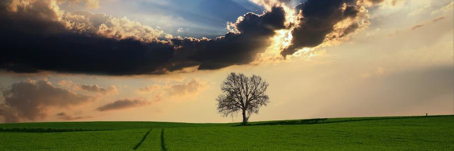 ICP Alltek - Santé et environnement